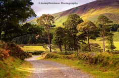 Ireland (Ltd Edition of only 20 Fine Art Giclee prints) by Jenny Rainbow Fine Art Photography. Beautiful picturesque Irish landscape scene with path and trees i. Rainbow Photography, Fine Art Photography, Landscape Photography, Drone Photography, Digital Photography, Nature Photography, Dublin, Irish Landscape, Thing 1