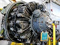 Pratt & Whitney Radial Engine at the New England Air Museum Plane Engine, Aircraft Engine, Jet Engine, Ww2 Aircraft, Military Aircraft, Grumman F6f Hellcat, Focke Wulf 190, Aircraft Propeller, Radial Engine