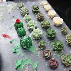 "1,266 Likes, 48 Comments - nanacake (since 2009) (@nana_cake) on Instagram: "" #다육이 #플라워케이크 #케이크 #나나케이크 #nanacake #nanaclass #cactus #succulent #buttercream #cakes…"""