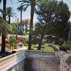 #capferrat #villefranche #beaulieu #monaco #montecarlo #frenchriviera #cotedazur Real Estate Agency, Luxury Real Estate, Monte Carlo, Monaco, Saint Jean Cap Ferrat, Somerset Maugham, Real Estates, Pine Forest, French Riviera