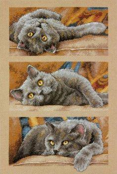 Cross Stitch, кошка триптих 8