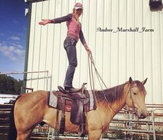 From Amber : amber_marshall_farm 7 hours ago More Sunday trust exercises. Here Cash and I were playing outside the arena where my friend Kateri entered him in a fun cowboy challenge obstacle course. You can't see it in this cropped photo but Cash is. Heartland Characters, Heartland Actors, Watch Heartland, Heartland Quotes, Heartland Ranch, Heartland Tv Show, Country Life, Country Girls, Ty E Amy