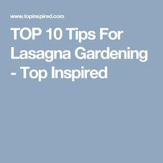 TOP 10 Tips For Lasagna Gardening - Top Inspired