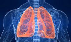 poumon2