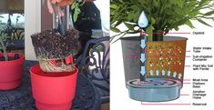 At most times providing the right amount of water to your plants can be a matter of judgment, but what if you are a novice and constantly struggle with the over and under water syndrome? These times call for a solution that can in a way automate the process of optimally watering the plants and ...
