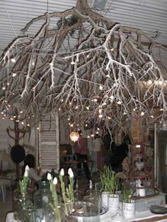 a glamorous cozy way to light especially large rooms & eco friendly lighting chandelier 22 DIY Ideas For Rustic Tree Branch Chandeliers If you are a rustic style lover then you will definitely like this creative DIY Chandeliers made fro Branch Chandelier, Outdoor Chandelier, Outdoor Lighting, Lighting Ideas, Rustic Chandelier, Lighting Design, Thanksgiving Table Settings, Thanksgiving Decorations, Christmas Tree Decorations