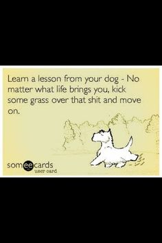 Life lessons