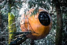 Free Spirit Spheres, with their innovative, round treehouse cabins - 10 to 14 feet off the ground, these tree globes are tucked into the forest canopy of Vancouver Island.