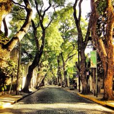 San Isidro, Buenos Aires-Argentina