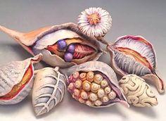 Doreen Gay-Kassel's 'Winter Colors; Pods', Plants & Color