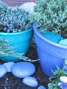 Colorful Container Gardens for Chilly Weather : Outdoors : Home & Garden Television  I do like this for the winter blues and the stones look great.