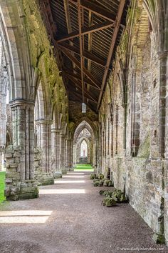 Tintern Abbey has some of the most beautiful historic ruins in Wales. Click through for more picture Marguerite De Navarre, Dissolution Of The Monasteries, London Blog, The Cloisters, Nature Photography, Portrait Photography, Travel Photography, Wedding Photography, Landscape Photos