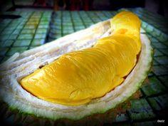 Durian..Musang King!