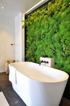 #Cascading creepersin a vertical #garden to bring relaxing #feng shui while bathing