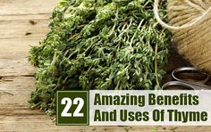 Thyme is one of the well known herbs known for both medicinal & culinary properties. Enlisted are the amazing thyme benefits for skin, hair & health along with the nutrition facts! Healing Herbs, Medicinal Herbs, Thyme Benefits, Health Benefits, Herbal Remedies For Anxiety, Herbs For Health, Natural Cures, Natural Health, Natural Medicine