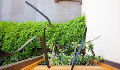 This is about a garden design project created on the edge of the barwon river in Geelong. It is comprised of custom furniture, outdoor screens and dry plantings. This garden has a Australian timber and stone theme. Landscape Design, Garden Design, Outdoor Screens, Custom Furniture, Design Projects, Gardens, Plants, Bespoke Furniture, Landscape Designs