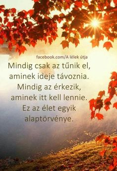 Az ÉLET egyik alaptörvénye! Peace Love Happiness, Peace And Love, Mind Gym, Motivational Quotes, Inspirational Quotes, Spiritual Messages, Affirmation Quotes, Powerful Words, Picture Quotes