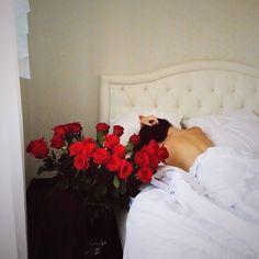 beautiful life\ dream\ morning\roses