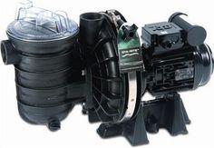 Sta-Rite 5P2R Pool Pump - H2oFun Ltd