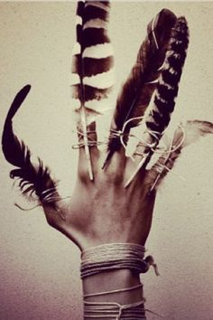 'A feather is the hand is better than a bird in the air'.