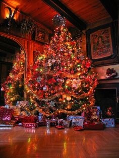 gorgeous full Christmas tree