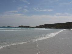 Picnic Beach- SA Australian Beach, Beaches, Picnic, Water, Outdoor, Beautiful, Gripe Water, Outdoors, Picnics