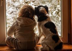 These Beautiful Photographs of a Little Boy and His Dogs Will Warm Your Heart | WOOFipedia by The American Kennel Club