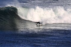 Jeff Sweeney surfing Bells last week#surfing #waves #greatoceanroad #surfcoast #bellsbeach @steveryanphotography by steveryanphotography