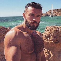 Best of Hairy Men Hairy Hunks, Hot Hunks, Hairy Men, Moustache, Oscar 2017, Beard Lover, Beard Tattoo, Bear Men, Hairy Chest