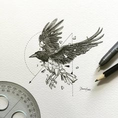 Abstract-Geometric-Animal-Illustrations-By-Kerby-Rosanes-02