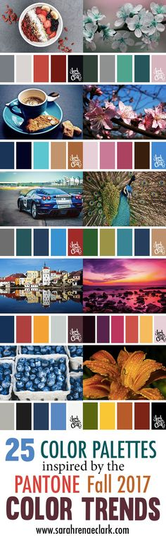 25 Color Palettes Inspired by the Pantone Fall 2017 Color Trends / Bild / Foto / Bilder für Sie Colour Pallete, Colour Schemes, Color Trends, Color Palettes, Fall Color Palette, Color Combos, Trending Paint Colors, Paint Colors For Home, House Colors