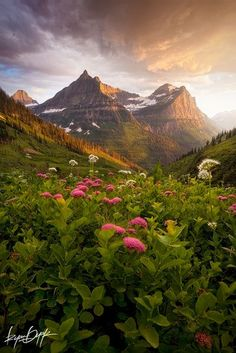 Glacier National Park ༺✿  I was born here in Alberta, Canada the vistas are breathtakingly beautiful!