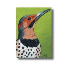 RKIves Original ACEO Oil Painting: Northern Flicker Bird #Realism