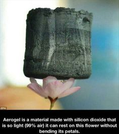 Aerogel is a material made with silicon dioxide that is so light (99% air) it can rest on this flower without bending the petals.