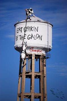 Chick-Fil-A restaurants have ads like this on an Atlanta, Georgia, water tower throughout the south. The cows have run amok.