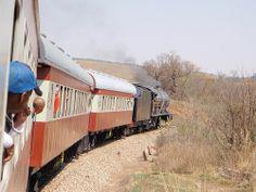 Reefsteamers Steam Train Trip Train Trip, Train Travel, Trains, Pictures, Photos, Train, Grimm