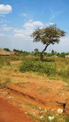 South Sudan, Africa.