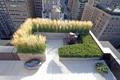 R/F Is a full-service landscape architecture firm with offices in Brooklyn and the Hudson Valley. City Landscape, Landscape Design, Garden Design, Landscaping Around Deck, Garden Landscaping, Landscaping Software, Landscaping Company, Rooftop Terrace, Terrace Garden