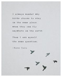 Self Love Quote Discover Poetry art print Harun Yahya inspirational quote poster wall art birds print blue artwork grad Moon Quotes, Bird Quotes, Deep Quotes, Wisdom Quotes, True Quotes, Quotes To Live By, Quotes About Birds, Being Used Quotes, Only You Quotes