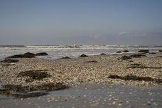 MayaQuilt: vakantie  Ameland 2012 Beach, Water, Travel, Outdoor, Gripe Water, Outdoors, Viajes, The Beach, Beaches