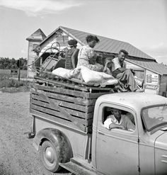 Mississippi Delta, on Mississippi Highway No. 1 between Greenville and Clarksdale. Negro laborer's family being moved from Arkansas to Mississippi by white tenant. June 1938