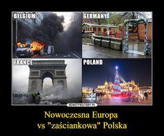 Best Memes, Funny Memes, Polish Memes, Funny Photos, Haha, Humor, Nice, Random, Movie Posters