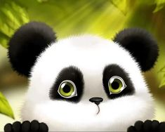 Cartoon Wallpaper, Wallpaper Hp, Cute Panda Wallpaper, Cute Wallpaper Backgrounds, Cartoon Panda, Cartoon Pics, Cute Cartoon, Giada De Laurentiis, Cute Animal Videos