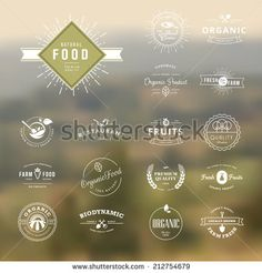 Set of vintage style elements for labels and badges for natural food and drink, organic products, biodynamic agriculture, on the nature background     - stock vector