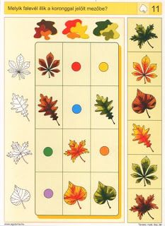 Preschool Math, Preschool Worksheets, Picture Comprehension, Sequencing Cards, Picture Writing Prompts, Autumn Activities For Kids, Autism Classroom, Brain Activities, Thinking Skills