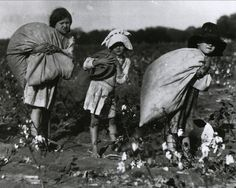 liquidnight:Lewis W. Hine -  Cotton-pickers ranging in age from five to nine, Bells, Texas, 1913 -    From Kids at Work - Lewis Hine and the Crusade Against Child Labor by Russell Freedman