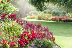 Perennials love this garden.What are 10 Foolproof Perennial Plants for the Northeast? - Take a look at a list of 10 foolproof, easy-care perennial plants that will grow and flourish just about anywhere in the northeastern United States. Best Perennials, Flowers Perennials, Jardin Luxuriant, Biennial Plants, Easy Care Plants, Coastal Gardens, Garden Nursery, Annual Flowers, Backyard Garden Design