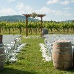 Wine barrels and flower petals line the aisle leading up to the pergola in front of the vineyard