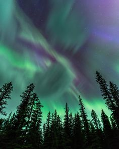 Northern Lights by Jeff Bartlett Taking photos of Northern Lights in places like the Yukon Territories is not simple. Here are some aurora borealistphotography tips from pro Jeff Bartlett. Light Photography, Photography Tips, Landscape Photography, Travel Photography, Aurora Borealis, Image Formation, Northen Lights, See The Northern Lights, Painting Northern Lights