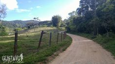 Today is a beatiful day to hike. Hoje é um ótimo dia para caminhar. Let's go! #dirtyroad #road #camping #camp  #hike #backpacking #trilha #nature #gustavonatrilha #hiking #natureza #floripa #trail #florianopolis #lg #lgg4 #celularphoto #photo #photooftheday #fotografia #follow #love #beautiful #picoftheday #instadaily #instalike